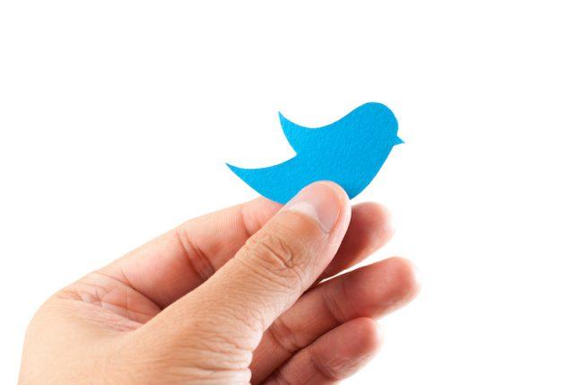 Twitter-bluebird